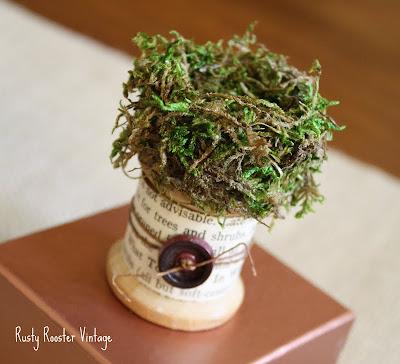 tiny-nest