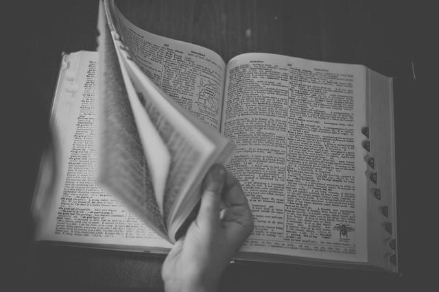 Pasando páginas del diccionario