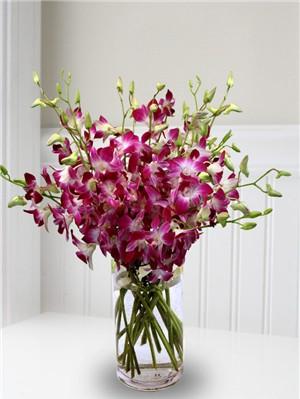 toko bunga anggrek surabaya, buket meja surabaya