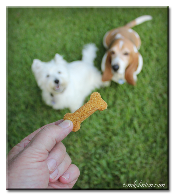 Treatibles Hemp Wellness Dog Chews are GRRRR-EAT!