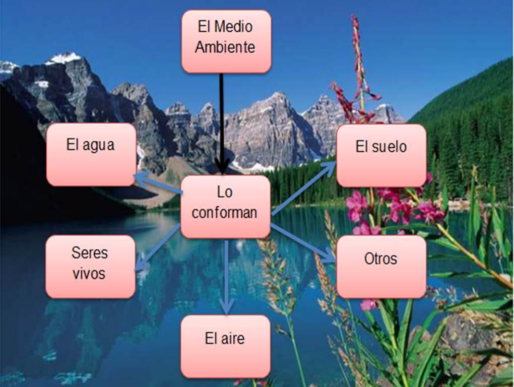 EL MEDIO AMBIENTE: EL MEDIO AMBIENTE Y SUS ELEMENTOS