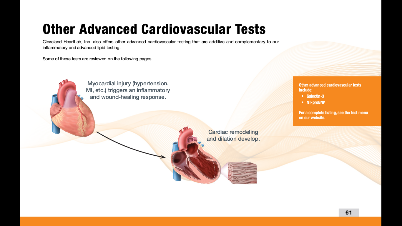 cardiovascular lab report by age Read this essay on cardiovascular lab report come browse our large digital warehouse of free sample essays get the knowledge you need in order to pass your classes and more.