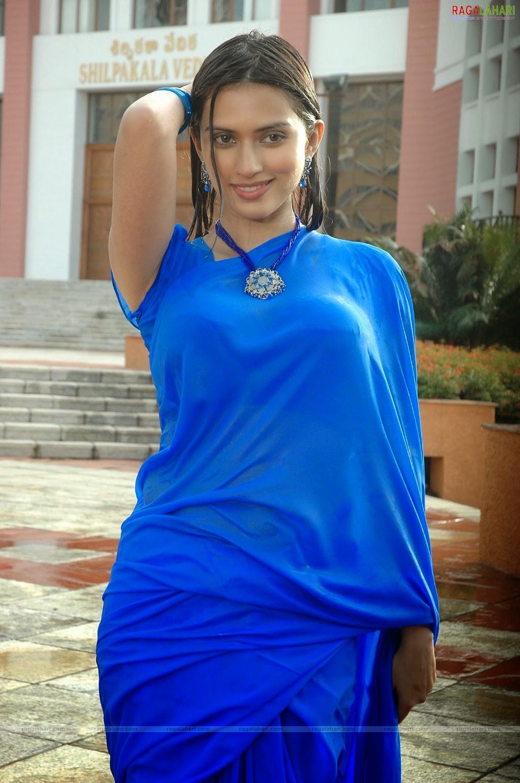 Indian Hot Actress In Wet Blue Saree Hot Photos -9825