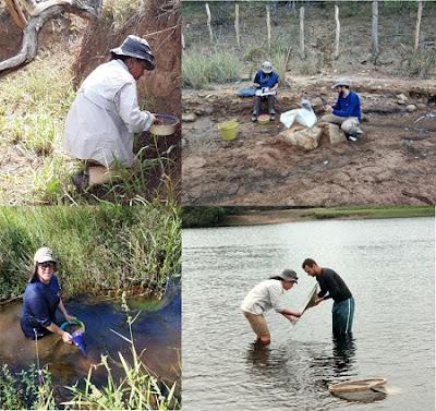 Serviço Geológico do Brasil inicia levantamento geoquímico do Projeto Contendas-Macajuba
