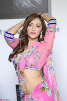 Actress Angela Krislinzki in Pink Saree Blouse Exclusive Pics March 2017 ~  050.JPG