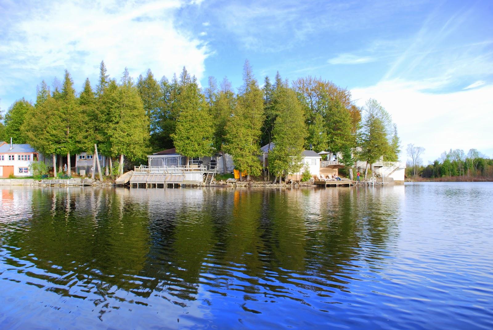 Fine Tonferns A Nostalgic Journey Tony Fernandes Beaver Lake Download Free Architecture Designs Estepponolmadebymaigaardcom
