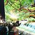 LG OLED Şelaleleri CES Katılımcılarını Hayrete Düşürüyor