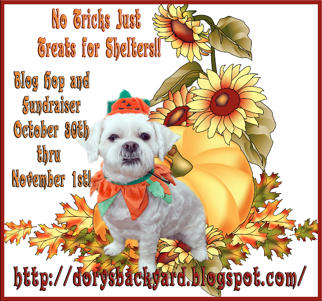 http://dorysbackyard.blogspot.com/2015/10/treats-for-shelter-dogs.html