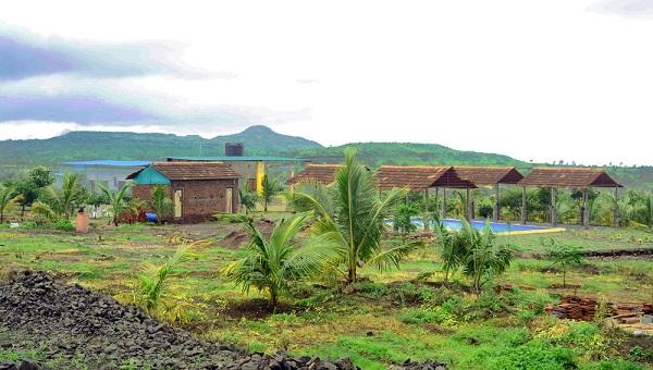Paradise Agro farm - Solashi