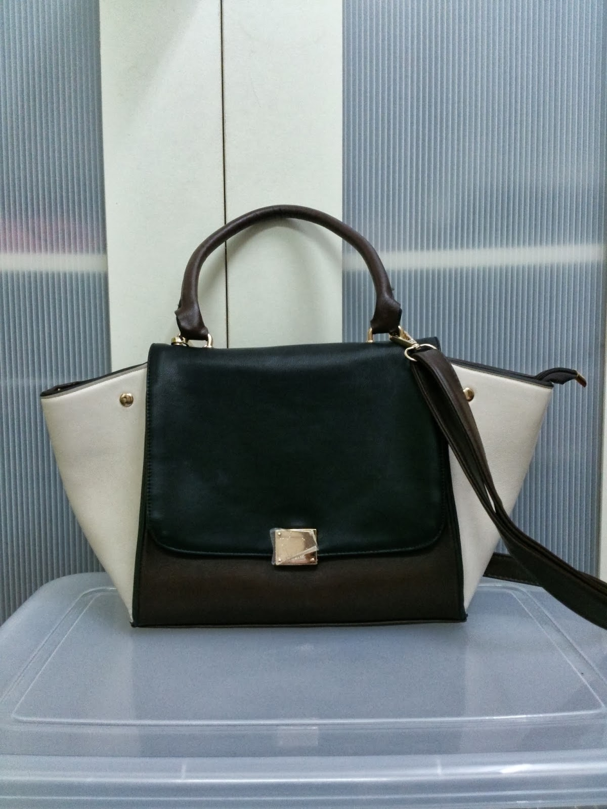 e5b771f16e Second Chance  Celine Phantom Inspired Bag