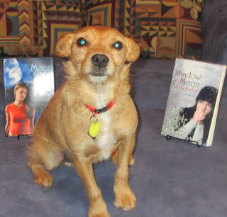 Auggie in front of books by his mum, Marilee Brothers