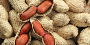 farinha-lowcarb-amendoim