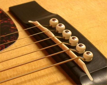 ngua dan guitar
