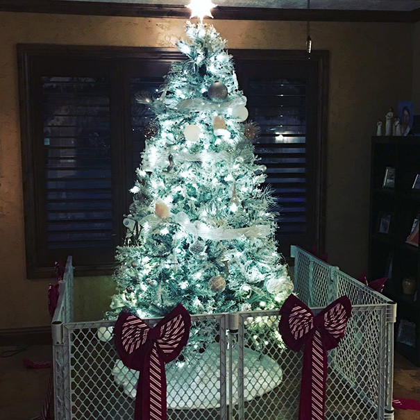 Как люди защищают новогодние елки от домашних любимцев (14 фото)