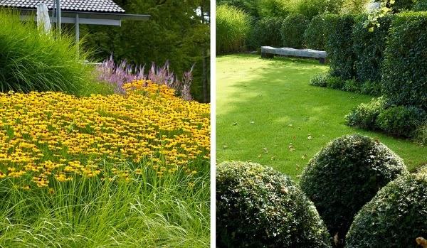 masa de flores amarillas