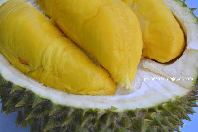 Buah-Durian-Musang-King-Rajah-Kunyit- Mao-Shan-Wang