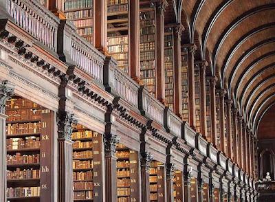 biblioteca dublin