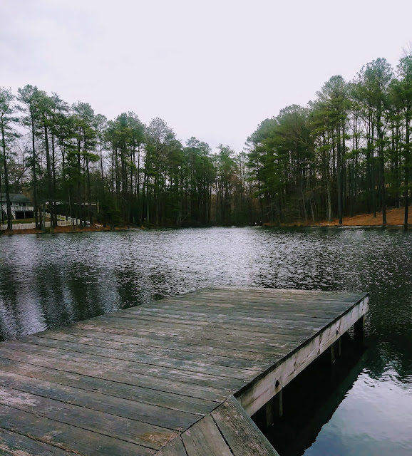 The pond in stormy weather.