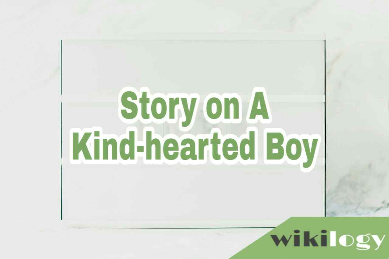 A Kind-hearted Boy Story, A Dutiful Boy Story