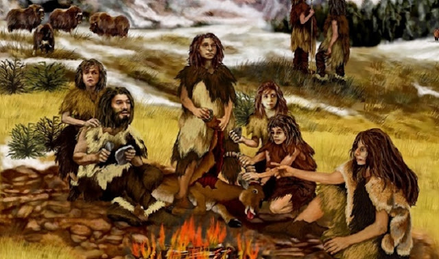 Neanderthals on cold steppes also ate plants