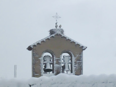 campanario-ciguenas