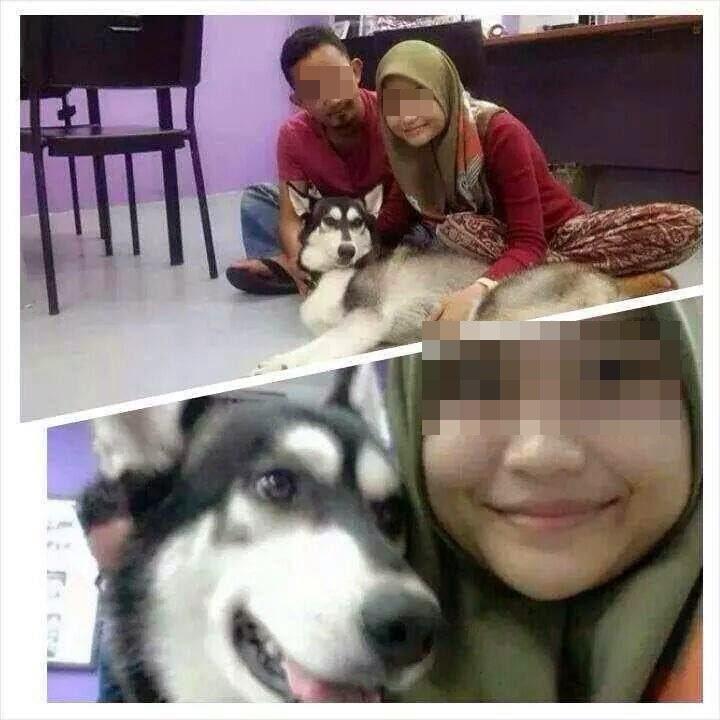 Awek Melayu Bertudung Bersama Anjing Yangel
