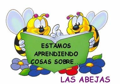 conocer las abejas