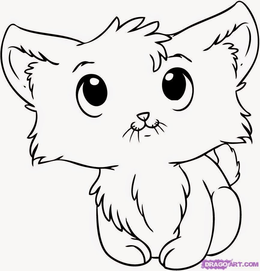 Kitten drawings cartoon anime for Kitties coloring pages