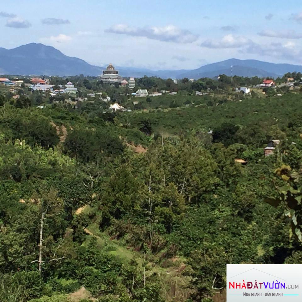Bán vườn - Thiện Chí - Ninh Gia - Đức Trọng - Lâm Đồng
