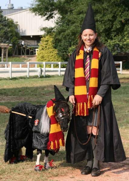 Inflatable Jockey Costume Fancy Dress Comedy Horse Suit ... |Horse Fancy Dress Costumes