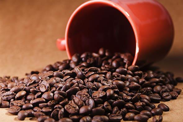 baldness cure, coffee, caffeine