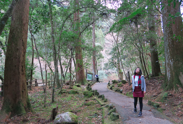 Takachiho Trail