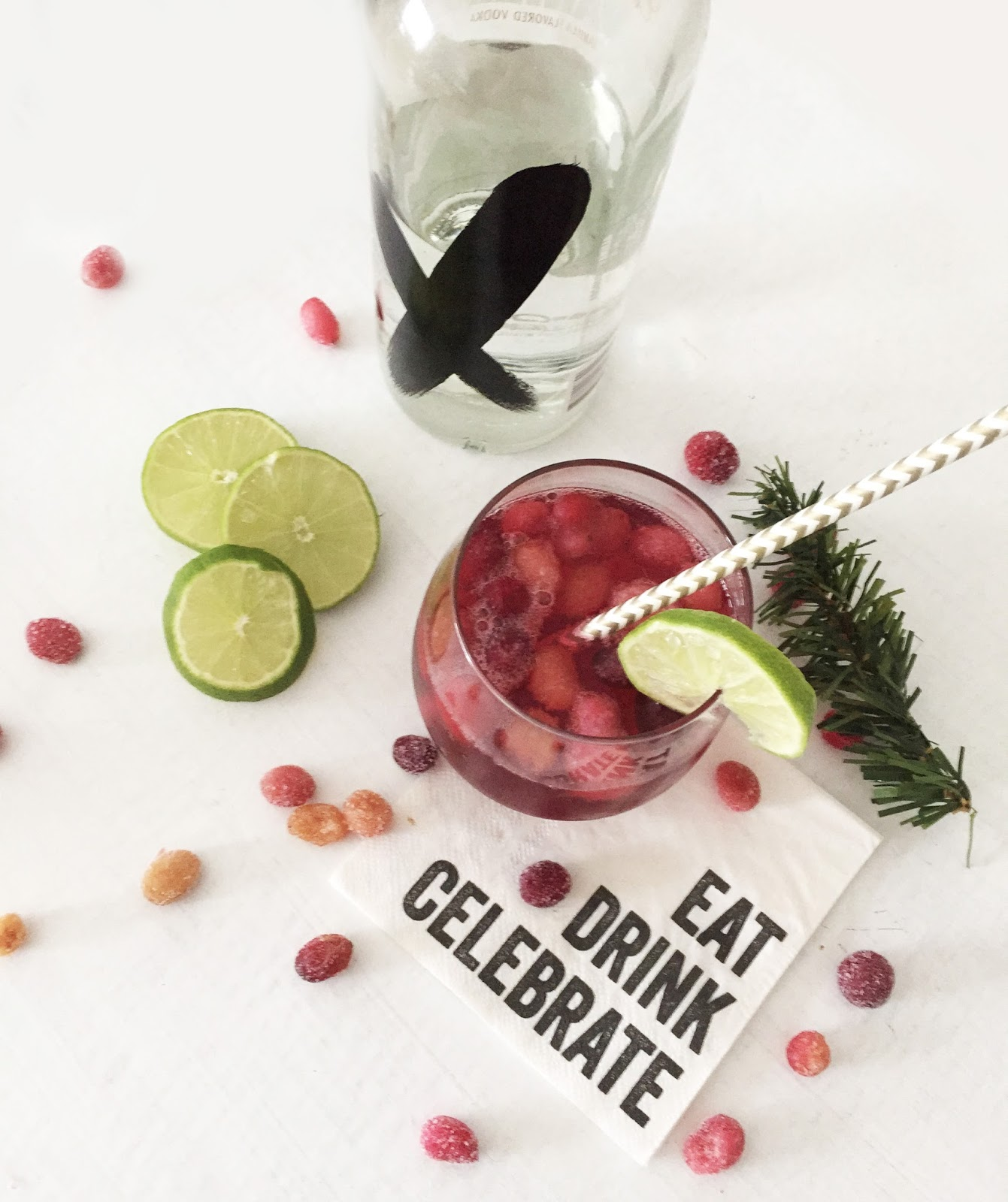 Holiday Libations: Vanilla Cranberry Cocktail