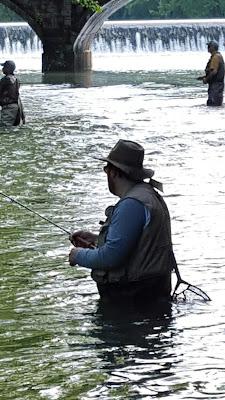 Fishing below the bridge, Bennett Spring