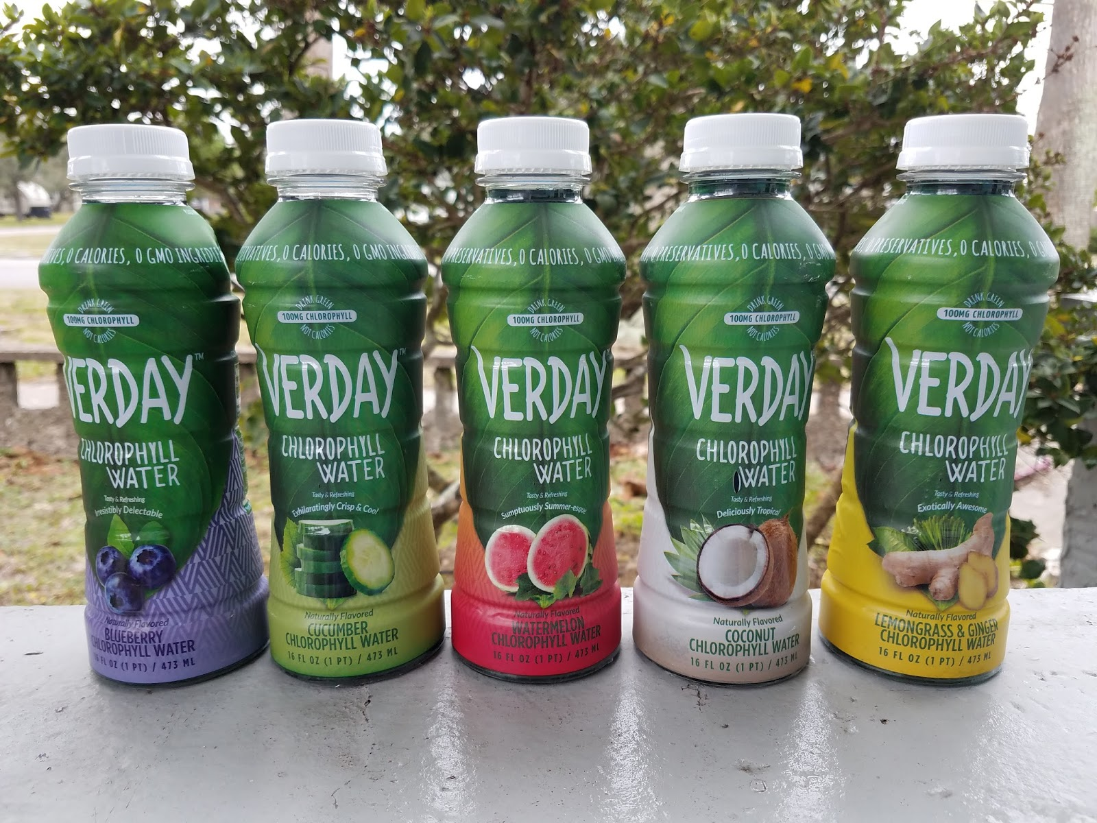 The ABCD Diaries: Stay Hydrated with Verday Chlorophyll Water!