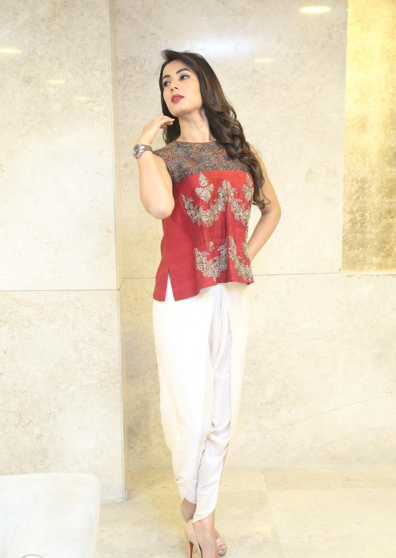 Full HQ Photos of Dictator' Actress Sonal Chauhan Hot Pics
