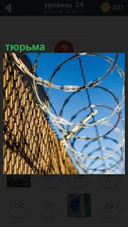 Высокое ограждение тюрьмы с колючей проволокой на верху