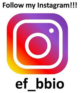 instagram bbio