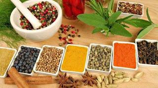 Obat herbal mengatasi eksim