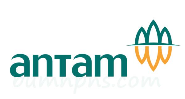 Lowongan Terbaru BUMN PT. ANTAM (Persero) Tbk - ICT PROGRAMMER Dibuka Sampai 10 Februari 2017