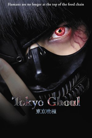 Poster Tokyo guru 2017