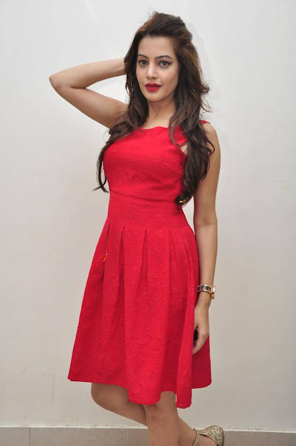 Diksha Panth Stills At Soggade Chinni Nayana Audio Launch