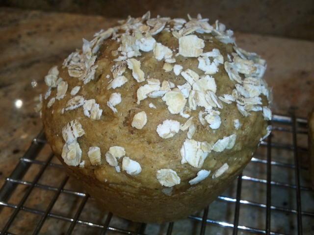 Applesauce Bran Muffin