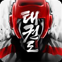 Taekwondo Game v1.8.0 Mod APK1