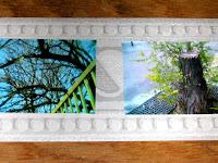 #phonéographie série Ciel mon Arbre 2 par AZa pixels *) alias AGNESetlesNUAGES