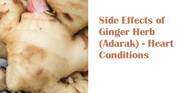 Side Effects of Ginger Herb (Adarak) - Heart Conditions