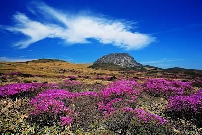 Panorama Indah Gunung Hallasan Pulau Jeju