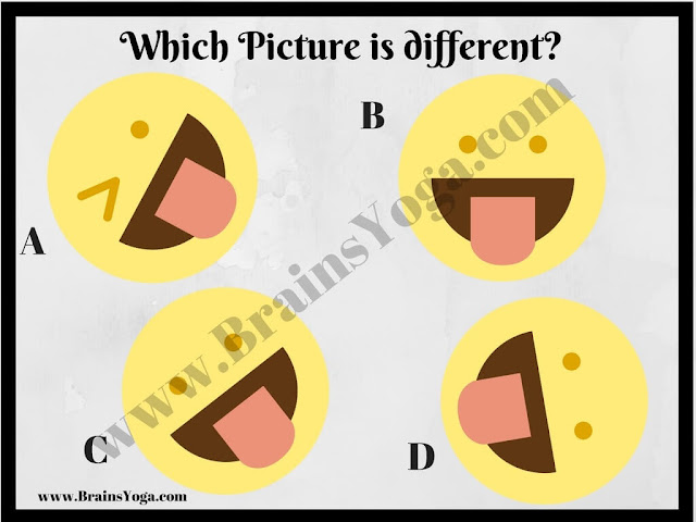 Picture Puzzle to find which picture is different