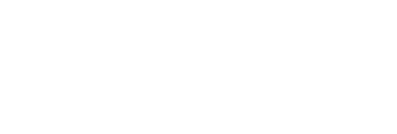 Artlook wedding photographer