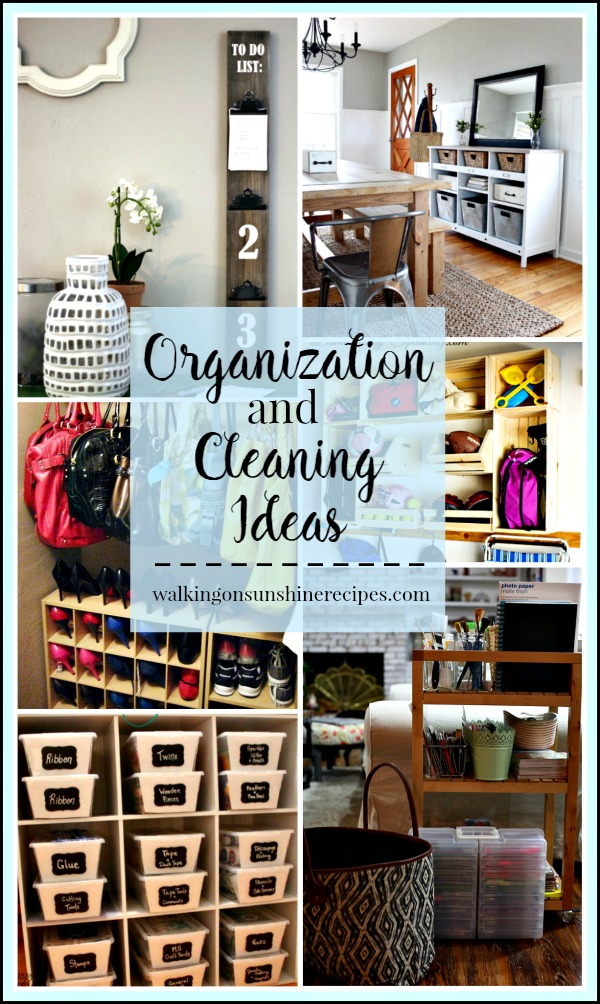 Party:  Organizing Cleaning Projects and Ideas from Walking on Sunshine.